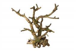 LEGNO BONSAI BROWN A