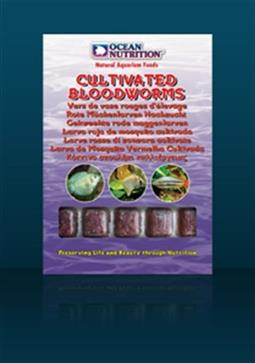 CULTIWATED BLOODWORMS 100g